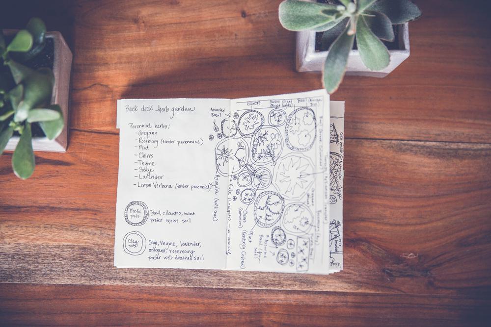garden journal 2.jpg