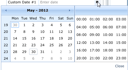 Date Time Picker