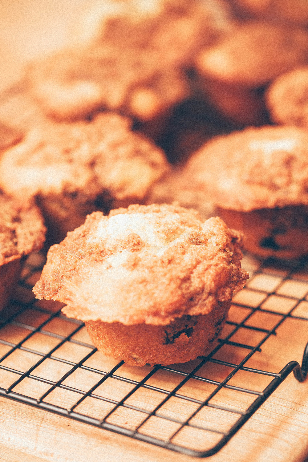 Dried cherry buttermilk muffins