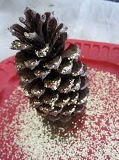 Unknown.jpeghttps://www.decoradventures.com/how-to-make-glittered-pine-cones/