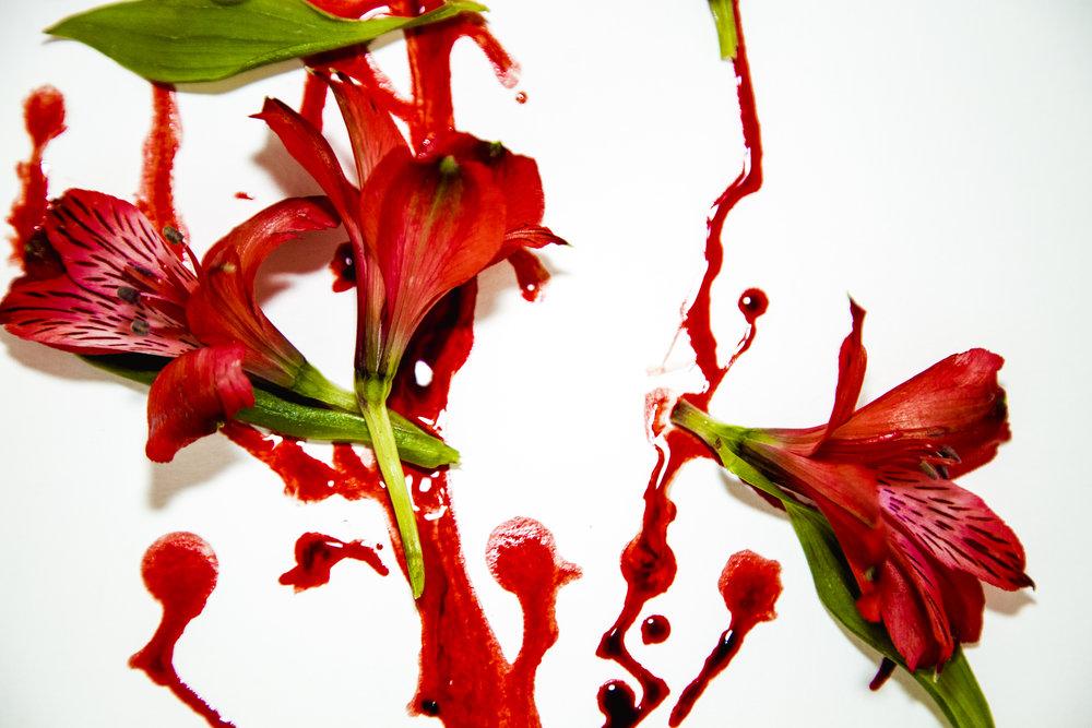 flowering8.JPG