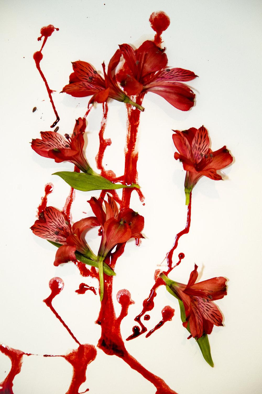 flowering25.JPG