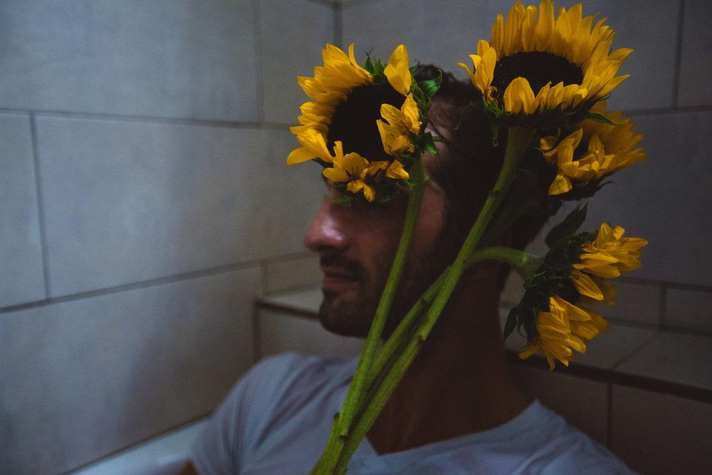 sunflowerday30.JPG