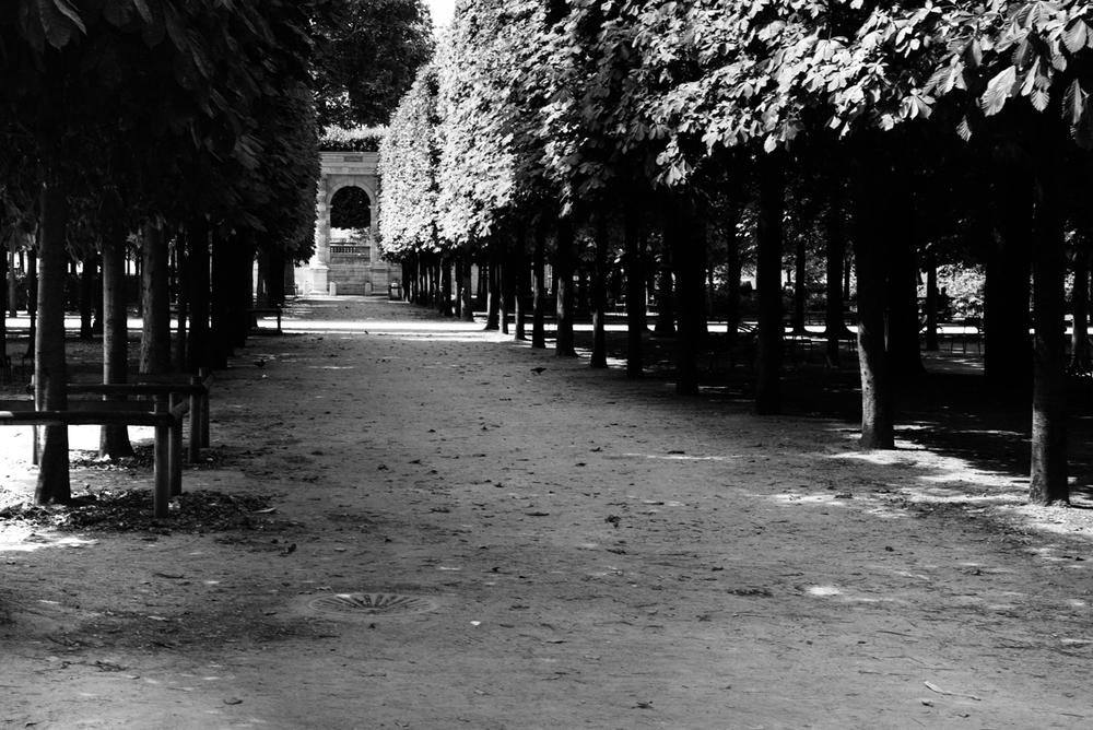 paris-france-william-bichara-photographer-studies-4.jpg
