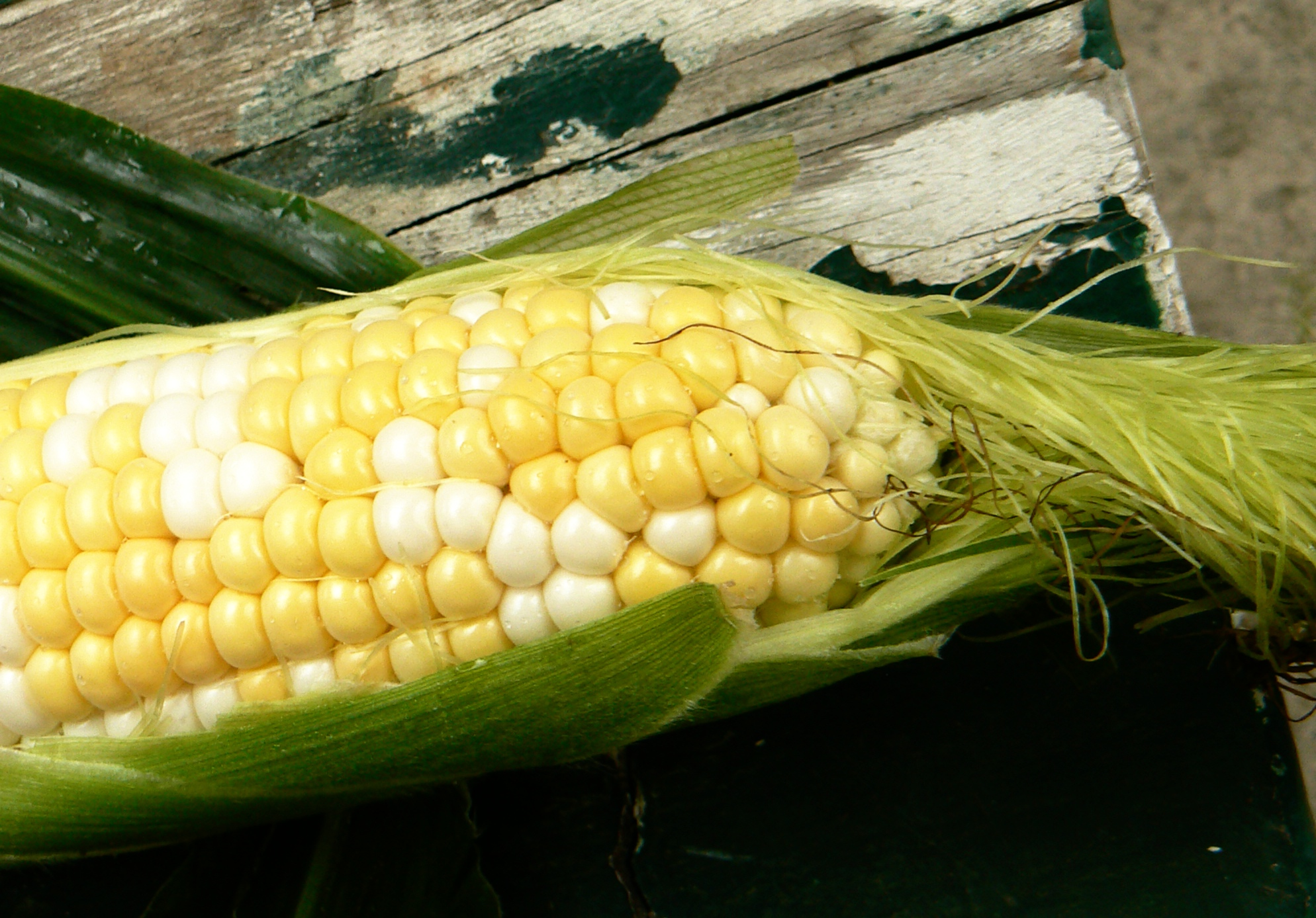 Fresh, Kirbygrown sweetcorn, a summertime essential.