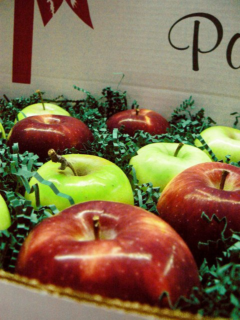 We ship apples from October 1st, until the second week in December to anywhere in the continental USA. Choose any combination of vairieties to sendas a gift or a treat for yourself. Pictured here is Empire and Crispin.