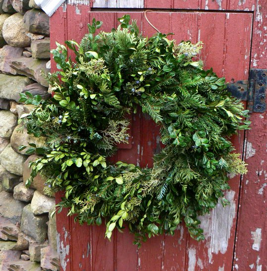 One of our handmade wreaths. We harvest most of our own greens, including boxwood, holly, fir, pine, dogwood, and rosehips. This is a ten inch wreath that also includes cedar