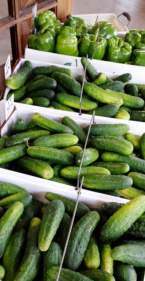 Dill pickles, sweet pickles, relishes, salad..... yum!