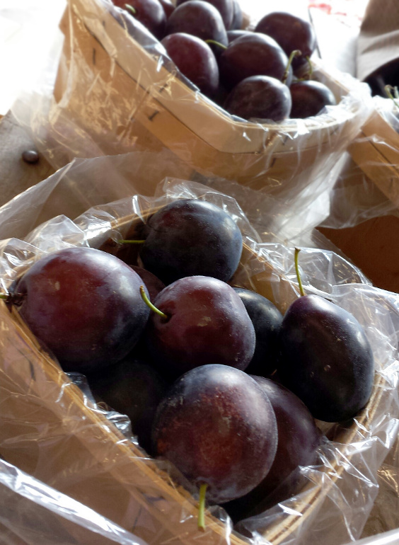 Fresh prunes are delicious eaten as a snack, stewed, roasted, or baked into desserts.