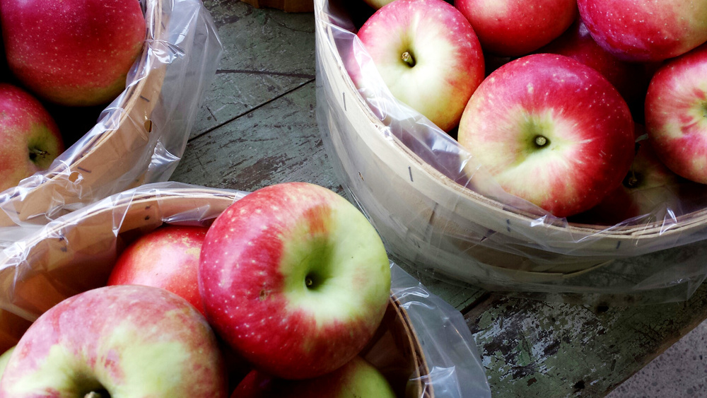 Zestar Apples are an exceptionally crisp early apple, available now at the market!
