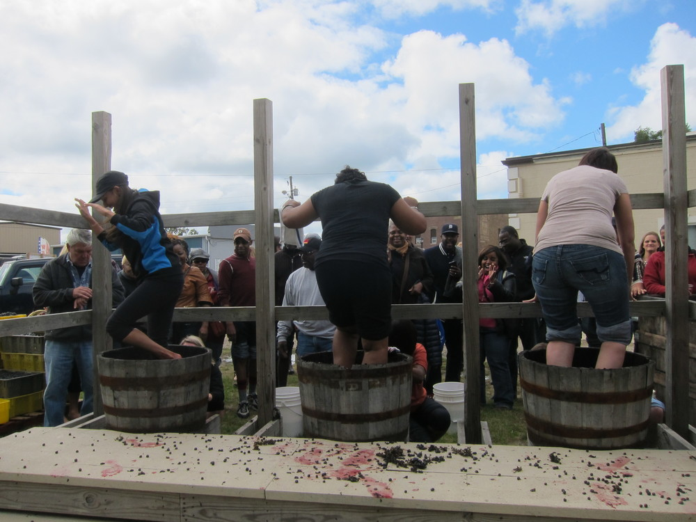 Wine Tasting + Grape Stomping