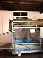 Horse Gym 2000 Equine Treadmill