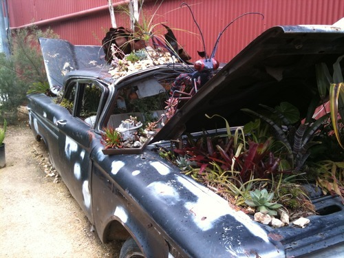 Flora Grubb: This car is a work of art at the Flora Grubb plant nursery in San Francisco… check out the peeled back roof with the trees coming out.