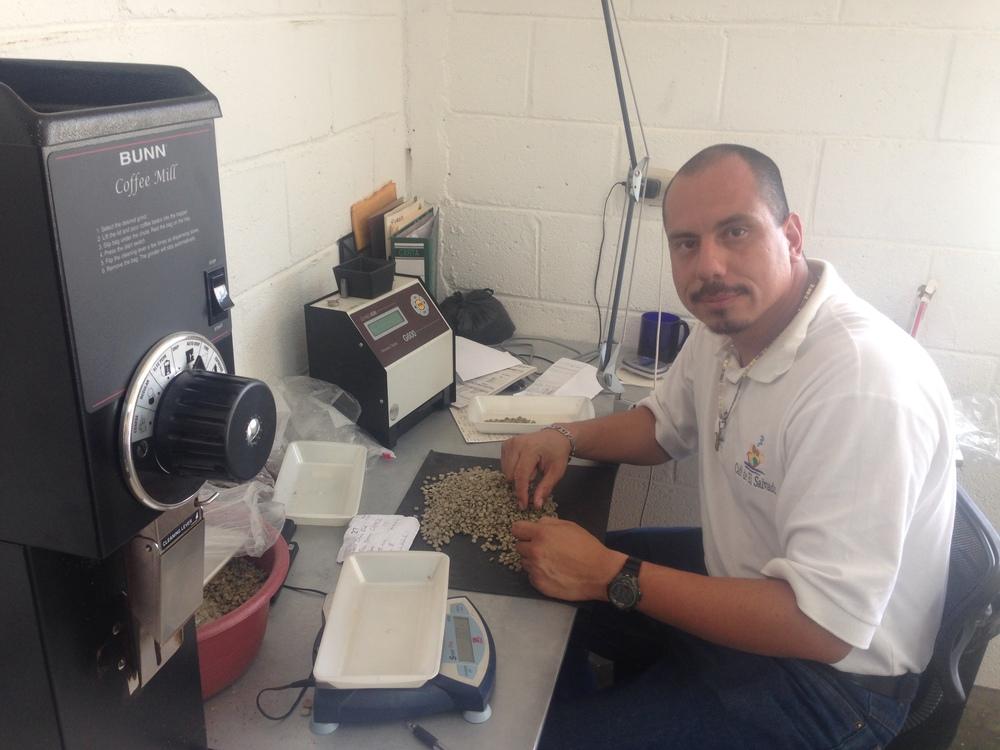 Hugo Lopez, doing the analysis of physical criteria in Beneficio Montecristo