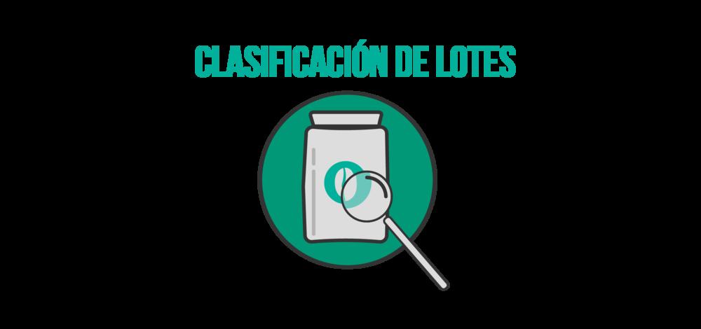 clasificacion-01.png