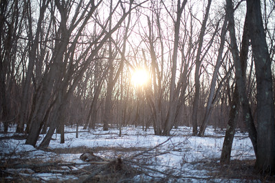 "Sun breaking through the trees near the Merrimack River.                0   false       18 pt   18 pt   0   0     false   false   false                                /* Style Definitions */ table.MsoNormalTable 	{mso-style-name:""Table Normal""; 	mso-tstyle-rowband-size:0; 	mso-tstyle-colband-size:0; 	mso-style-noshow:yes; 	mso-style-parent:""""; 	mso-padding-alt:0in 5.4pt 0in 5.4pt; 	mso-para-margin-top:0in; 	mso-para-margin-right:0in; 	mso-para-margin-bottom:10.0pt; 	mso-para-margin-left:0in; 	mso-pagination:widow-orphan; 	font-size:12.0pt; 	font-family:""Times New Roman""; 	mso-ascii-font-family:Cambria; 	mso-ascii-theme-font:minor-latin; 	mso-fareast-font-family:""MS 明朝""; 	mso-fareast-theme-font:minor-fareast; 	mso-hansi-font-family:Cambria; 	mso-hansi-theme-font:minor-latin;}    Photo credit:  Erik Jacobs, The New York Times"