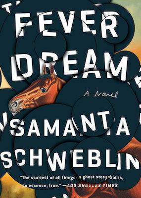fever-dream-book-cover.jpeg