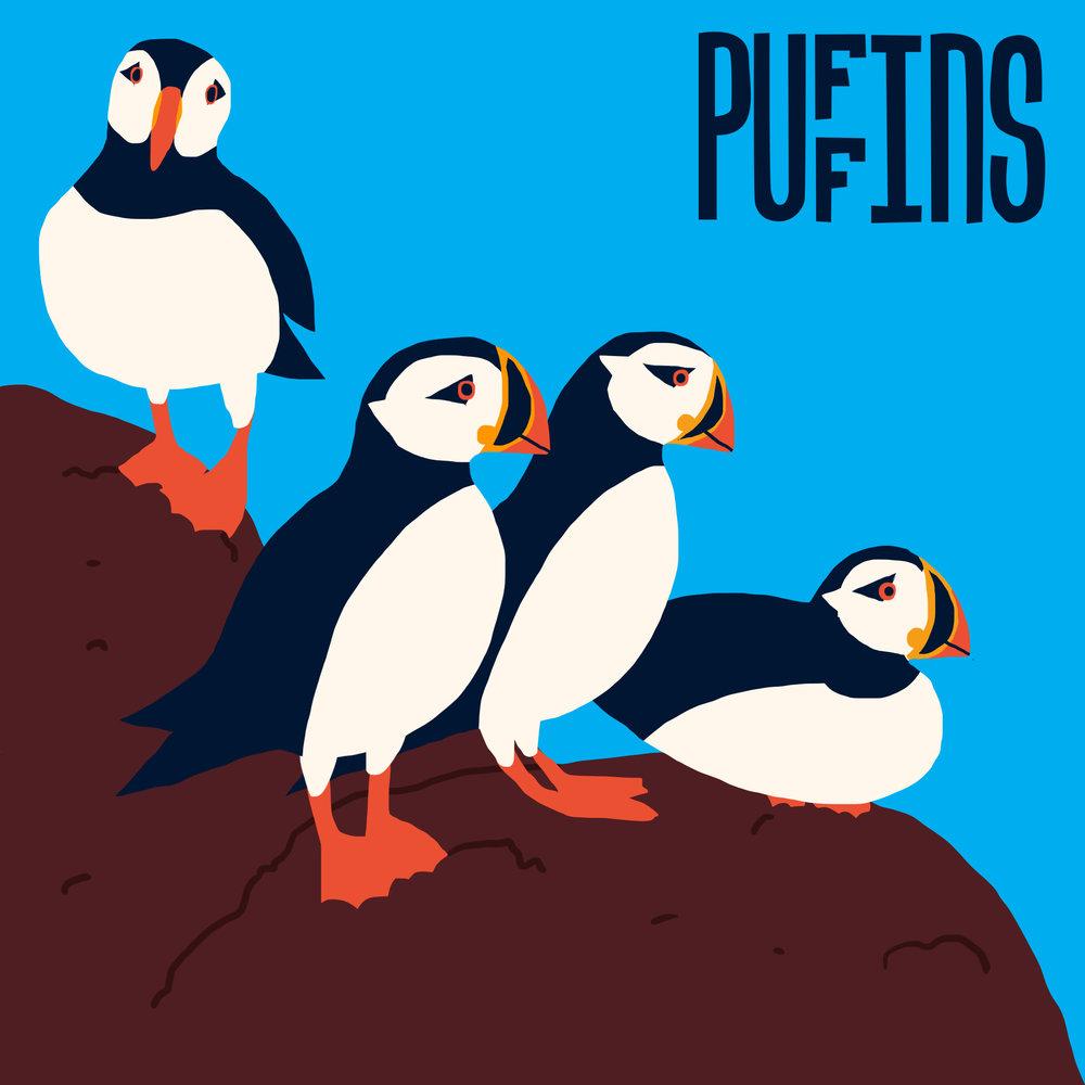 puffins social post.jpg