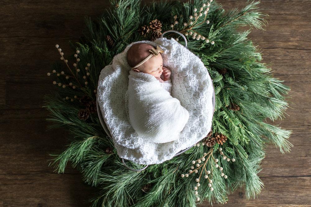 Christmas Wreath Newborn Photo