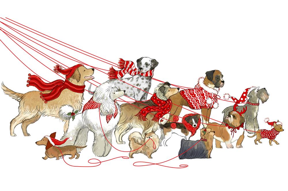 dogwalker.jpg
