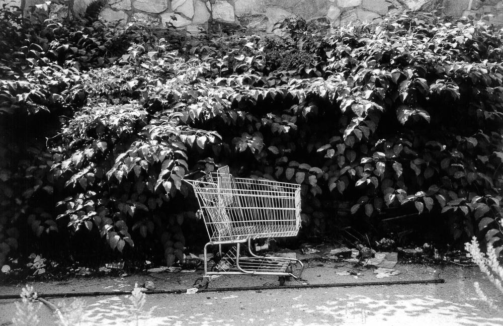 carts02.jpg