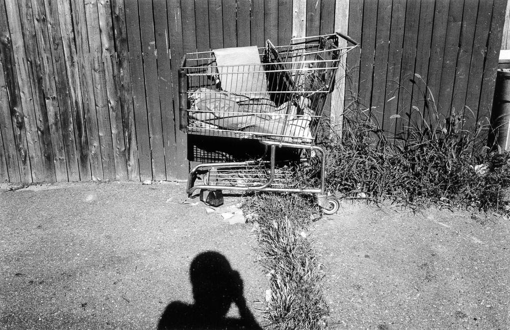 carts01.jpg
