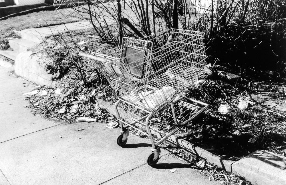 carts03.jpg