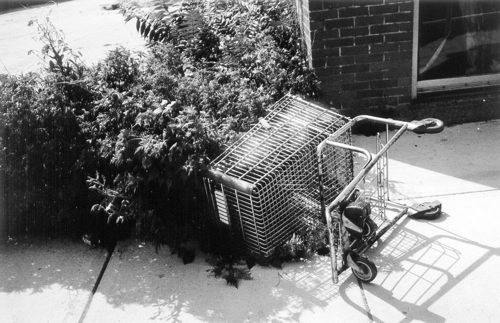 carts09.jpg
