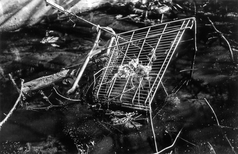 carts12.jpg