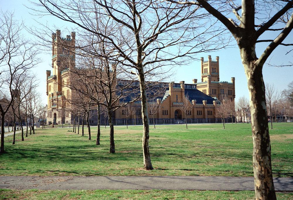 paradeground trees_03.jpg