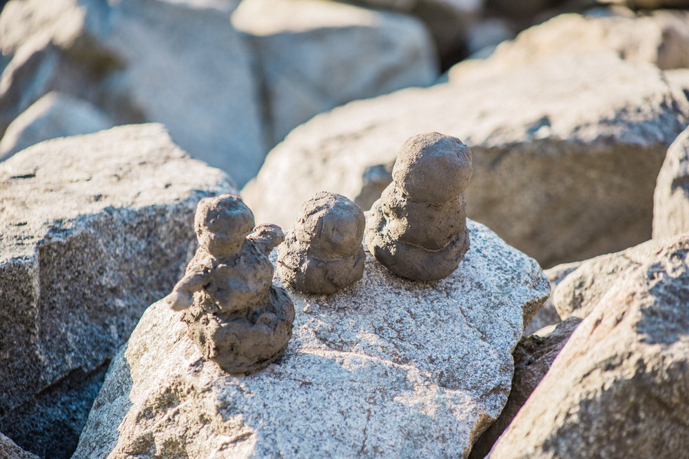 We found these magnificent mud-men while strolling along a beach in Anchorage.
