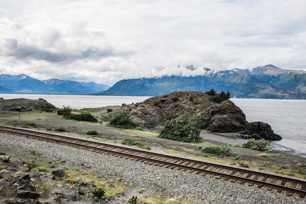 """One of my favorite stops is Beluga Point on """"the arm"""". You cross the railroad (illegally, I believe) and explore the other side by the water. During a short time of the year (mid-July through August) you must keep your eye out for Belugas making their way through while the salmon are running."""