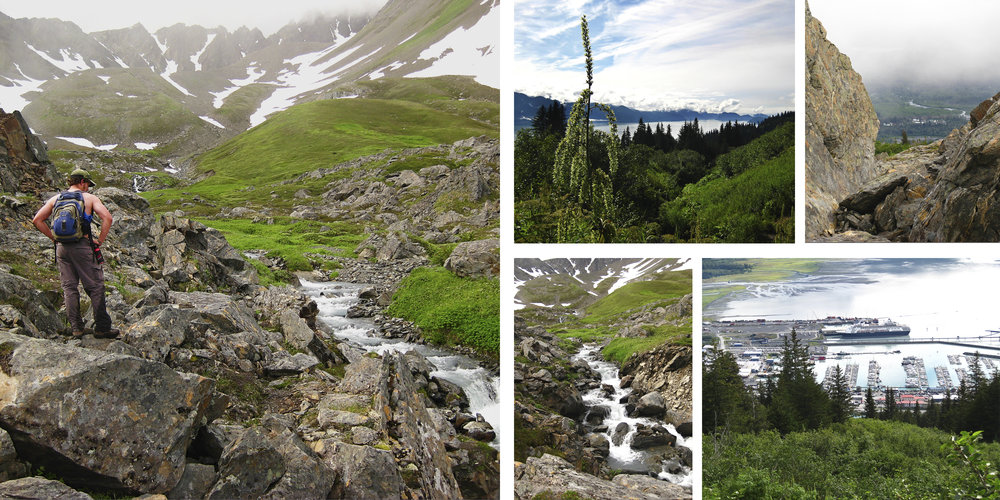 Mount Marathon in Seward is breathtaking. It is quite a hike but gives you the most amazing view of Seward down below.