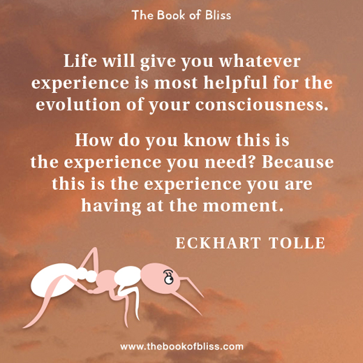 life-will-give-you-whatever-experience-eckhart-tolle-quotes.jpg