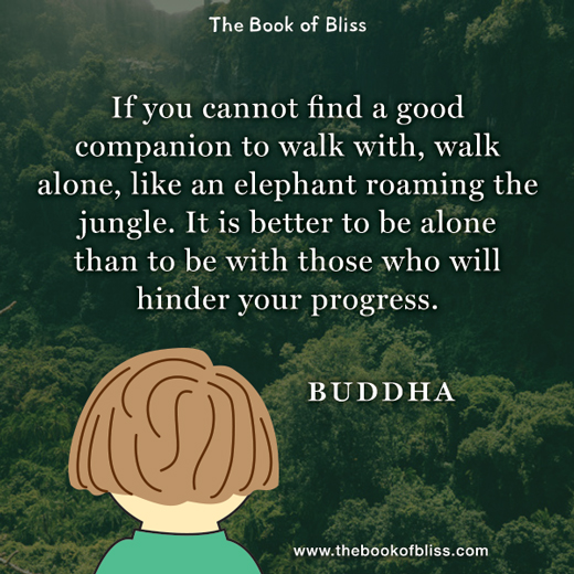 cannot-find-a-good-companion-buddha-quotes.jpg
