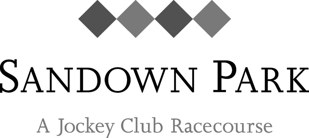 Sandown_RGB_Logo.jpg