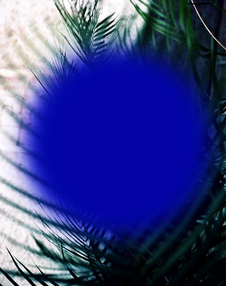 RoxanneAzar-clustereclipse-02-int.jpg