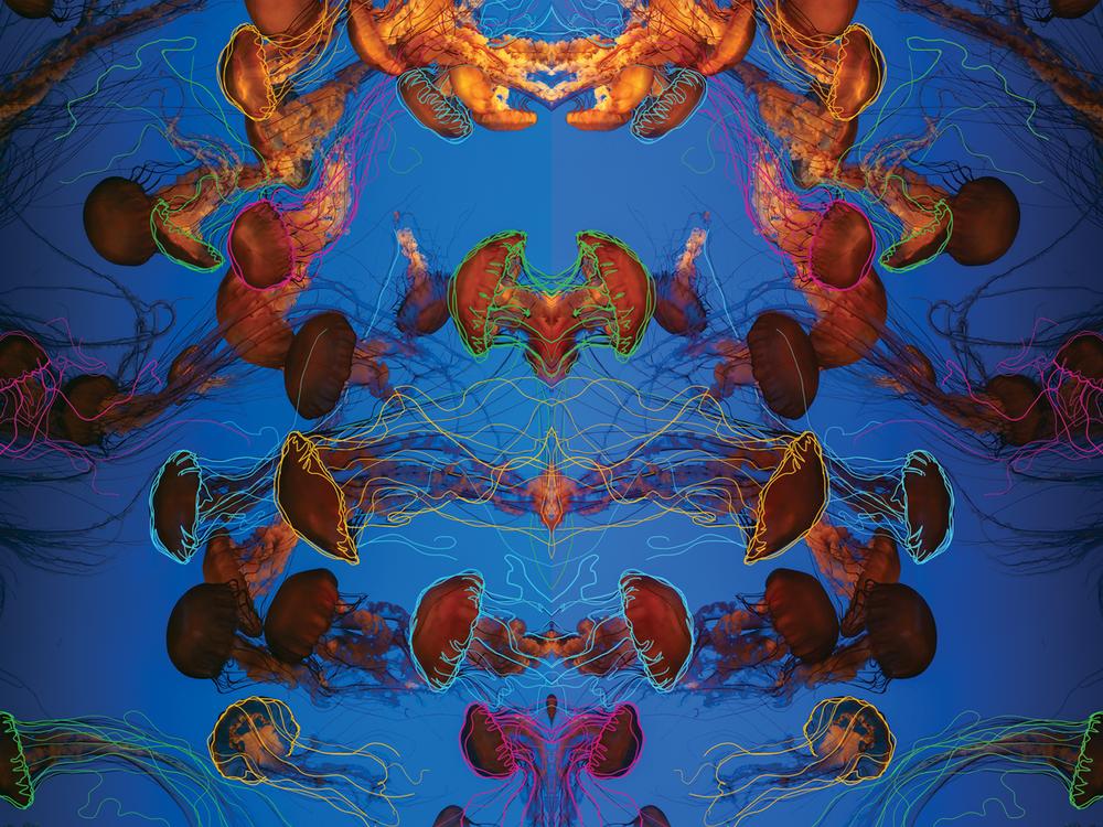 Eurydice Backdrop Design