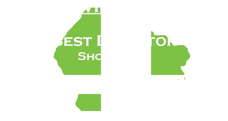 Artemis_BestDirector_Winner.png