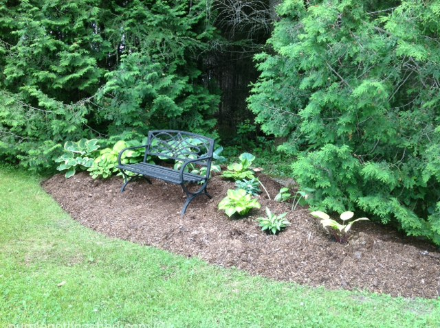Hosta bed, AFTER, stones to come.jpg