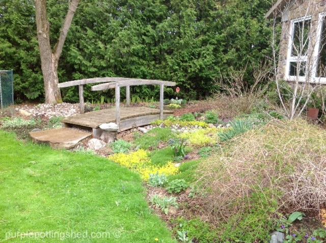 Bridge garden, spring.jpg