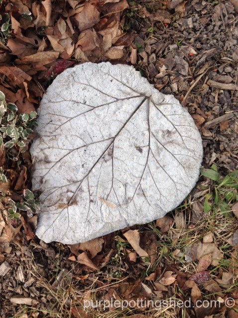 Leaf concrete stepping stone.jpg