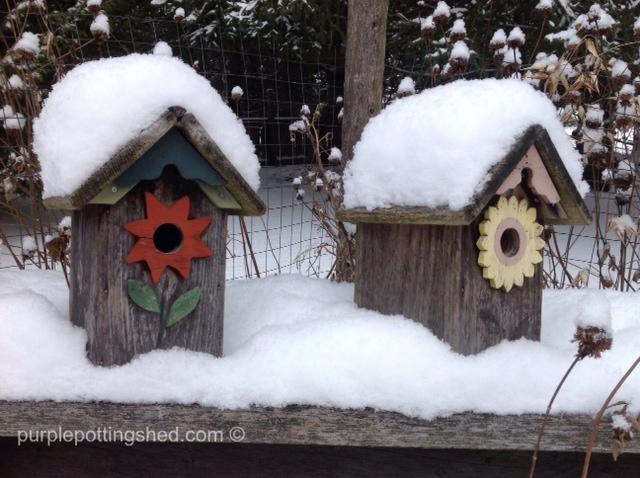 Bird houses with snow.jpg