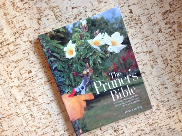 Pruner's Bible, book.jpg