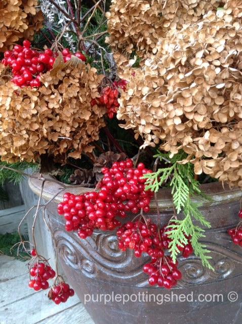 Winter bouquet, berries.jpg