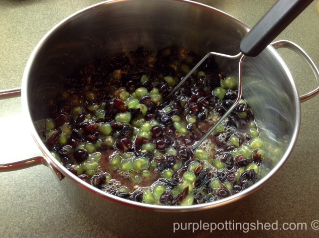 Grapes mashed.jpg