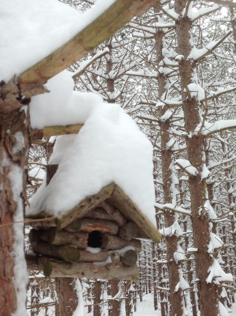 Birdhouse in snow 2.jpg