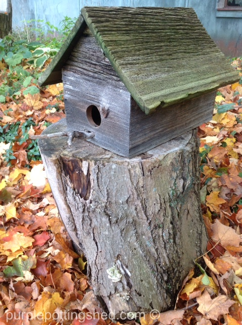 Chunk of wood with birdhouse.jpg