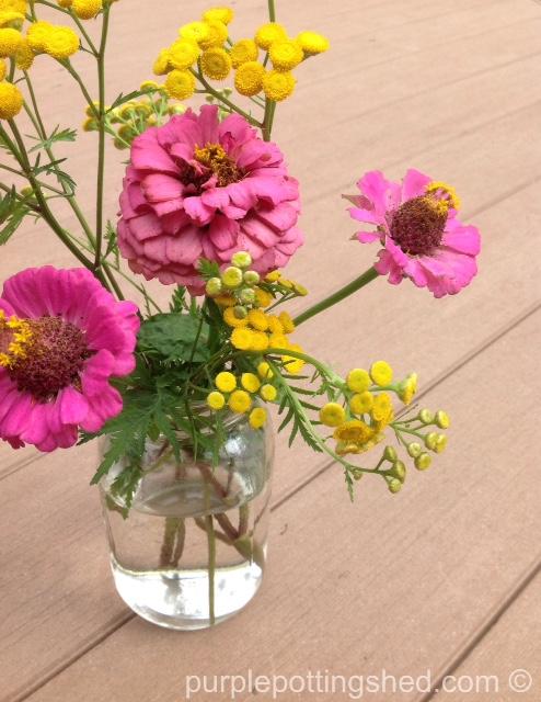 Zinnia bouquet.jpg