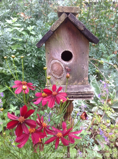 Birdhouse on spindle with coreopsis.jpg